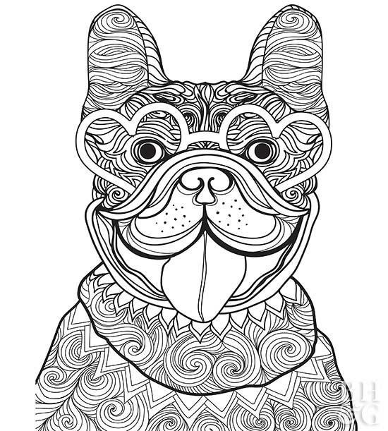 coloring pages dog # 8