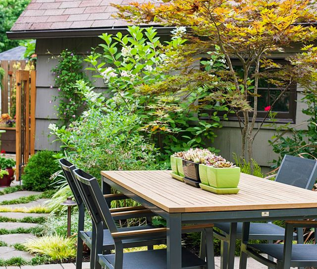 This Garden Explored Small Trees For A Beautiful Landscape