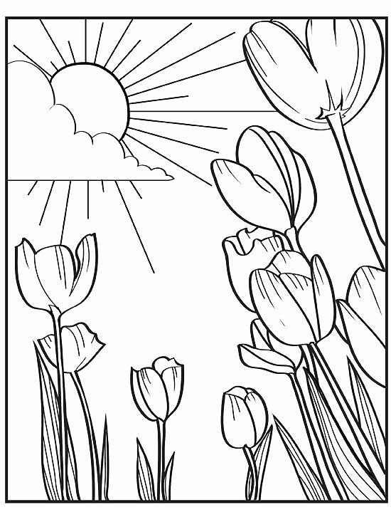 Printable Spring Coloring Pages | Parents | free printable spring coloring pages for adults
