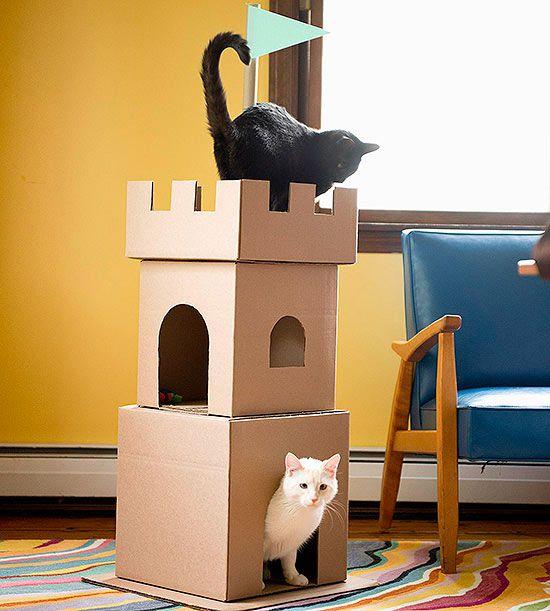 cardboard cat castle parents