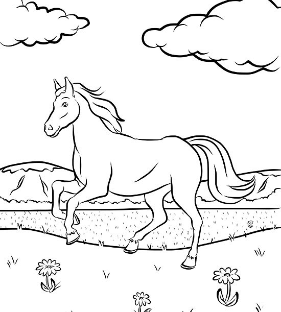 horse coloring pages # 29