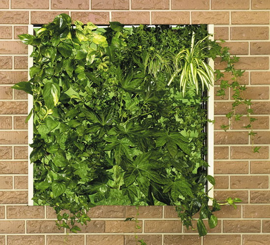 Beautiful Vertical Garden Ideas: 5 Awesome Vertical Garden Ideas To Decorate Your Home