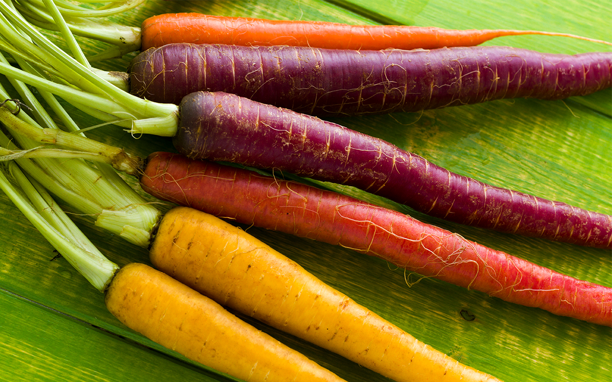 Are There Any Benefits To Multi Colored Carrots
