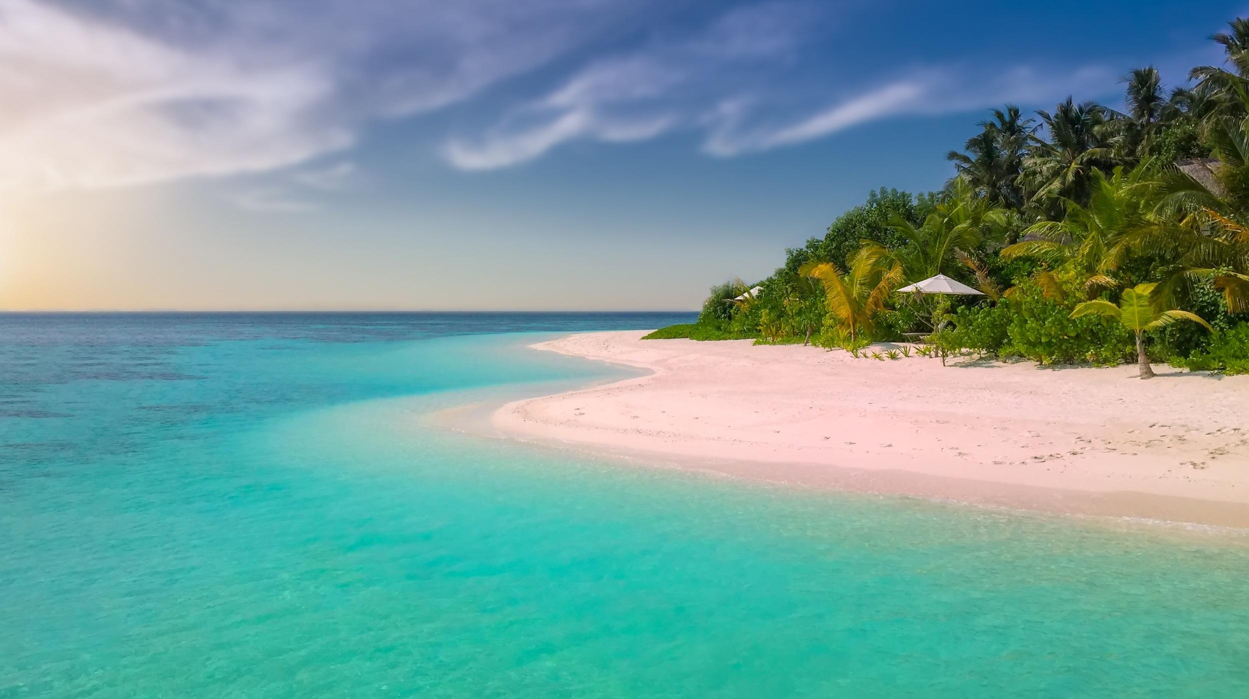 Free Stock Photo Of Beach, Coast, Coconut Trees