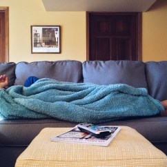 Donate Sofa In Nyc High Tech Pet Scram Sonic Mat Free Stock Photo Of Comfortable, Couch, Home