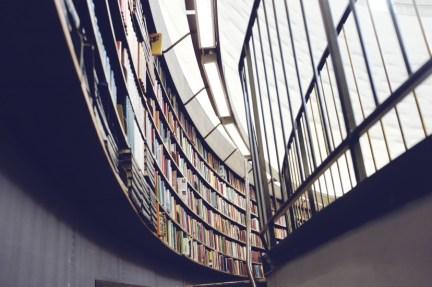 Bibliothèque : que faire après le bac ES