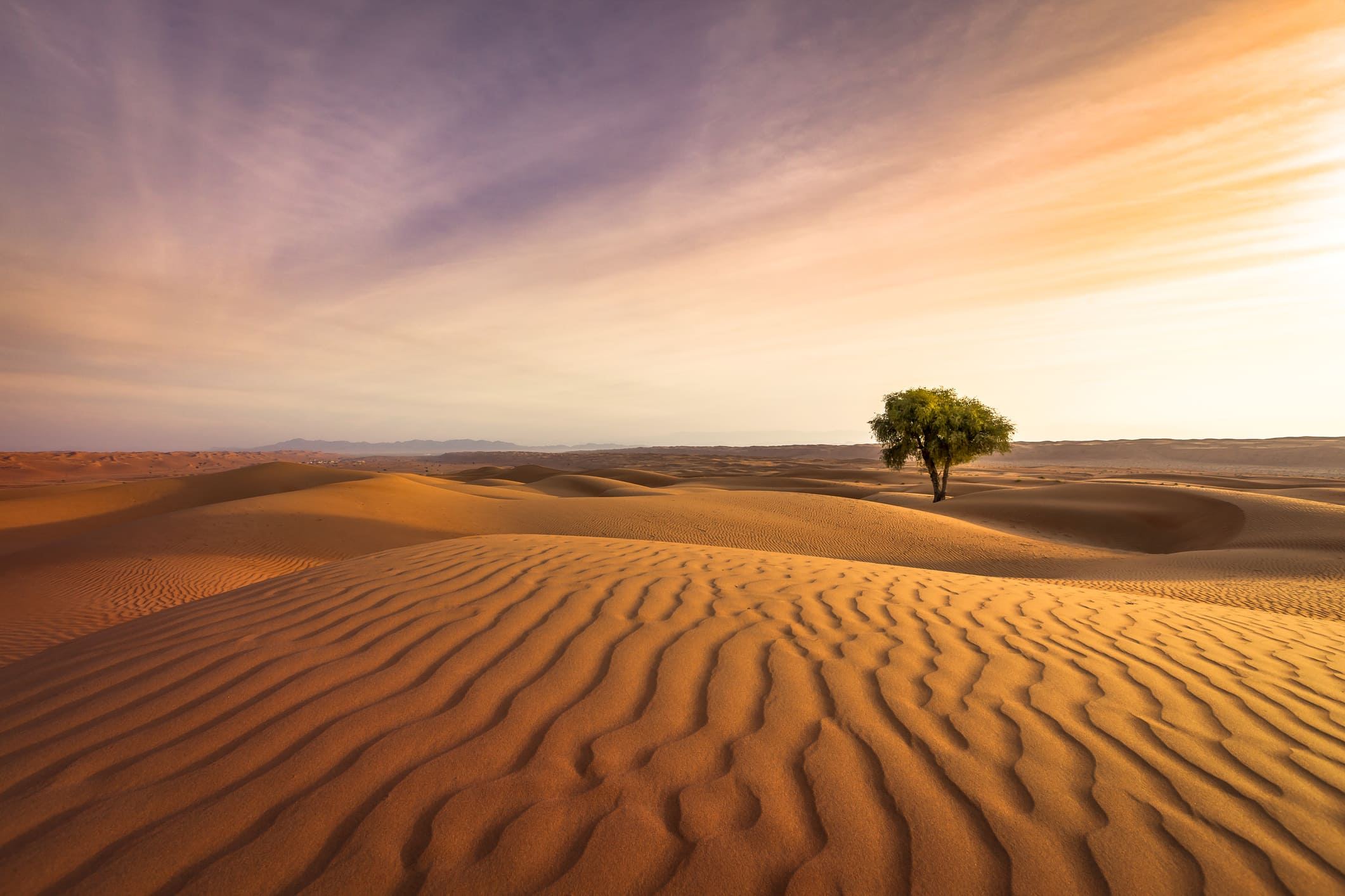 How to Use Negative Space in Landscape Photography