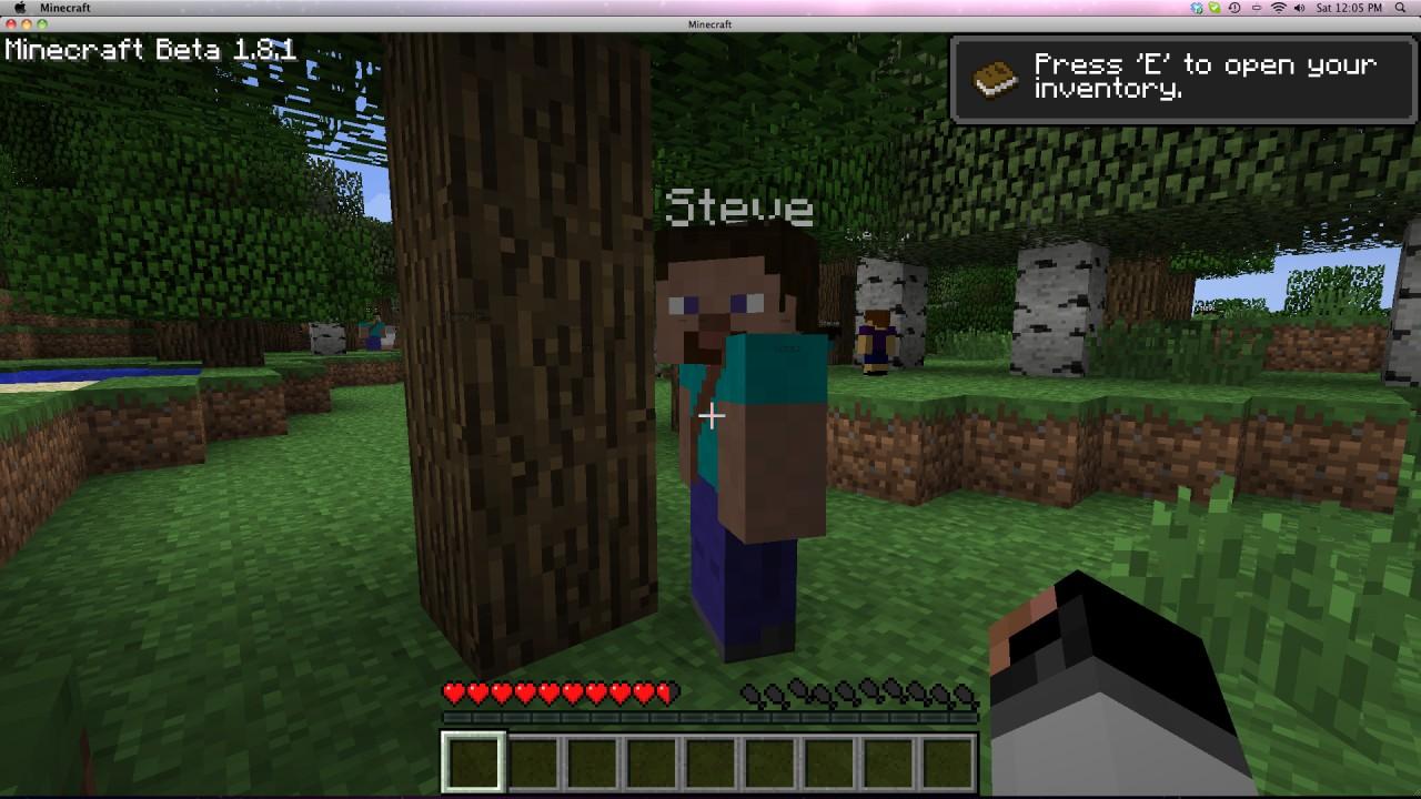 Civilization v27 5 new human mobs  Miner New website Minecraft Mod