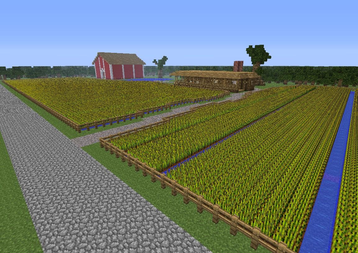 Most Minecraft Servers Played
