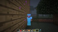 The Life of Herobrine Minecraft Project