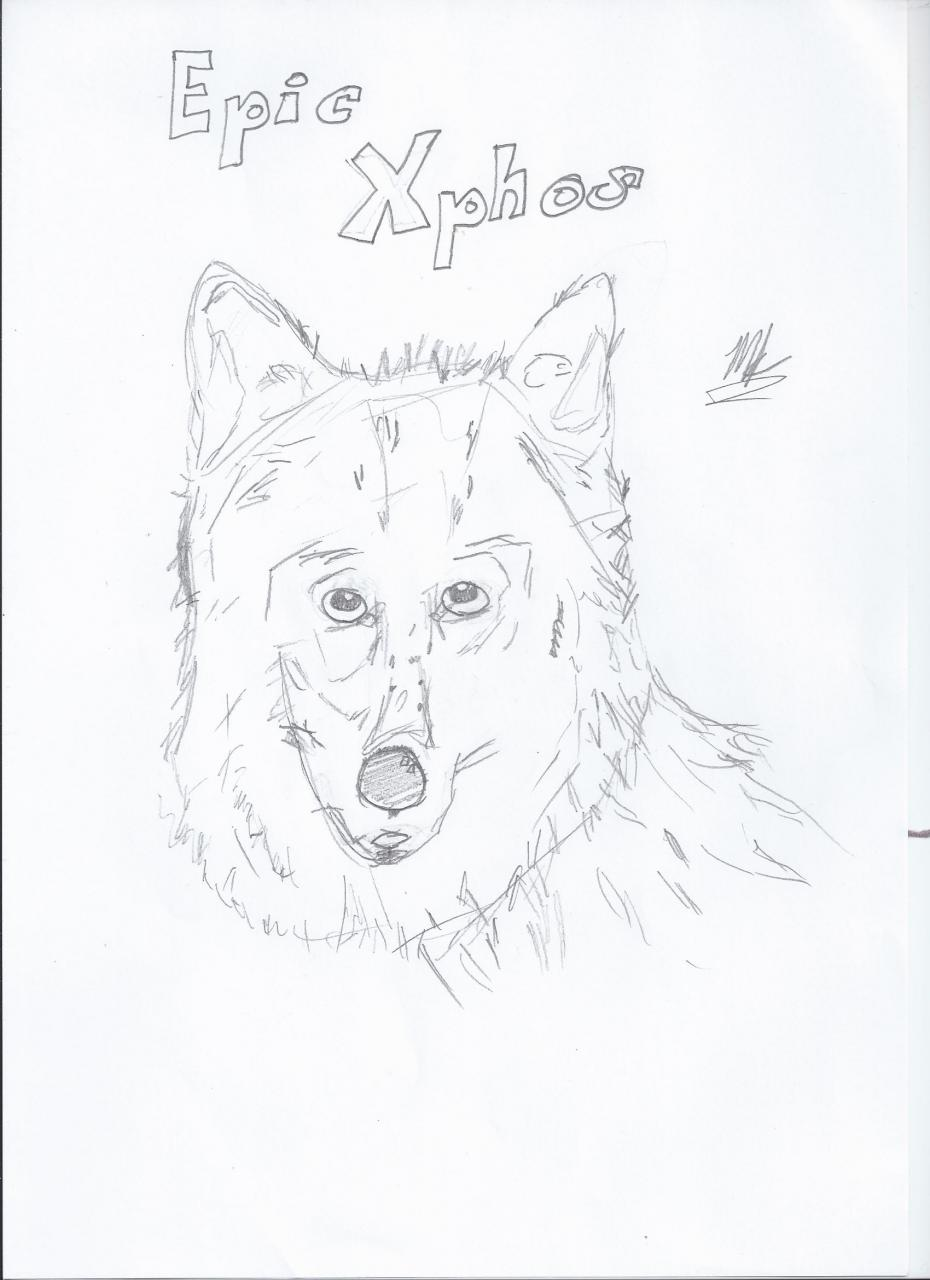 Drawing of a wolf Minecraft Blog