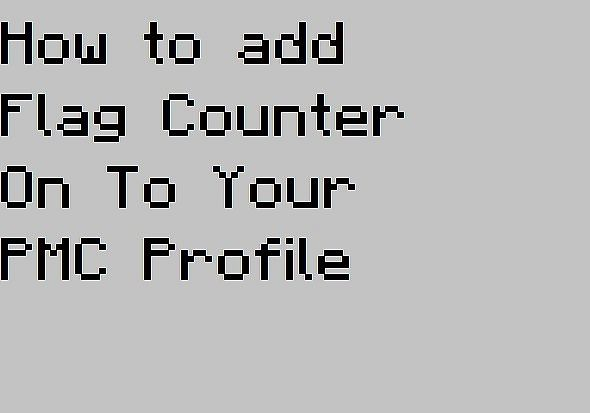 How to add Flag Counter on to your PMC profile! Minecraft Blog