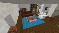 The Big Bang Theory Minecraft Project