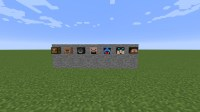 How to get a custom player head. Minecraft Blog