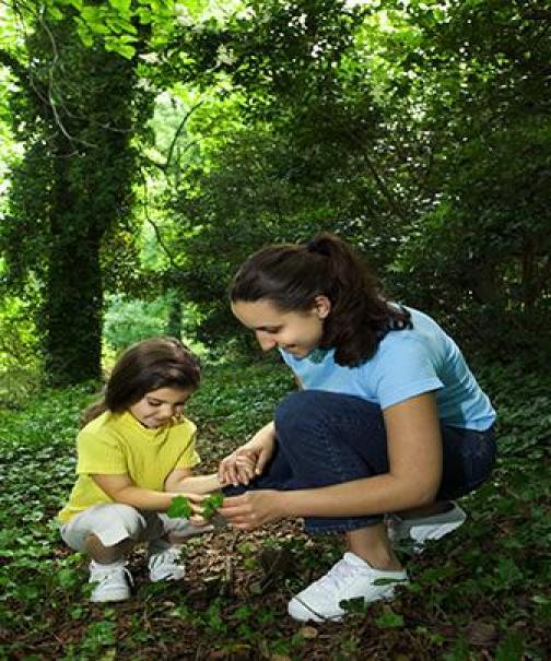Qualidade de vida e meio ambiente