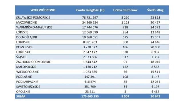 Najwięcej niepłacących za czynsz w kujawsko-pomorskim. Dominują kobiety po 55. roku życia