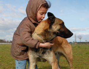 Bien faire cohabiter un chien avec des enfants   Pratiquefr