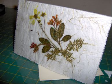 Antique Any Occasion Pressed Flower Card FaveCrafts Com