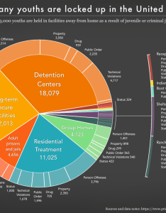 Pie chart showing the number of youths confined in adult prisons and jails indian country also youth confinement whole prison policy initiative rh prisonpolicy