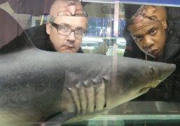 Jay Z and Damien Hirst