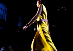 Victoria Beckham F/W 2013 Show Part II at the New York Public...