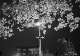 Avenue of the Americas, New York. Photo Olivier Zahm