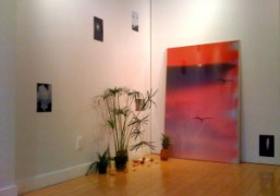 Mark Borthwick's new show open until October 19th at Half Gallery, 208…