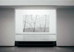 "Alex Katz ""New Landscapes"" Exhibition at Galerie Thaddaeus Ropac, Paris"
