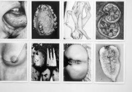 """Nobuyashi Araki """"I , Photography"""" exhibition at Anton Kern Gallery, New York"""