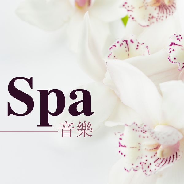 Album Spa音樂 - 水聲,海浪聲音和輕音樂 , Various Composers by Spa音樂   Qobuz: download and streaming in high quality