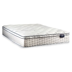 208056 3050 Queen Mattress Serta Traymoor Euro Top Perfect Sleeper