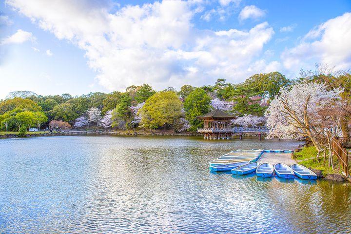 息を呑む絶景―奈良― 一度は訪ねておきたい美しい景色10選