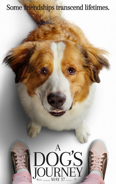 Get A Load Of That Dog : Dog's, Journey, Movie, Review, Summary, (2019), Roger, Ebert