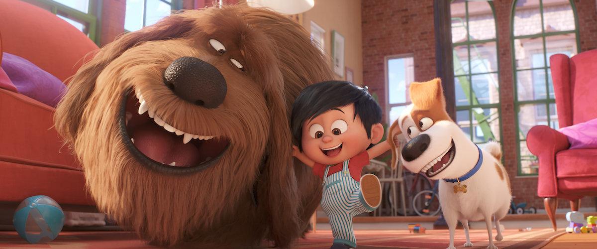 The Secret Life of Pets 2 movie review (2019)   Roger Ebert