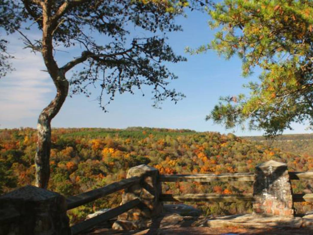 How Alabama State Parks Are Surviving Budget Cuts