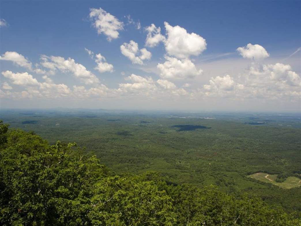 Cheaha State Park Camping