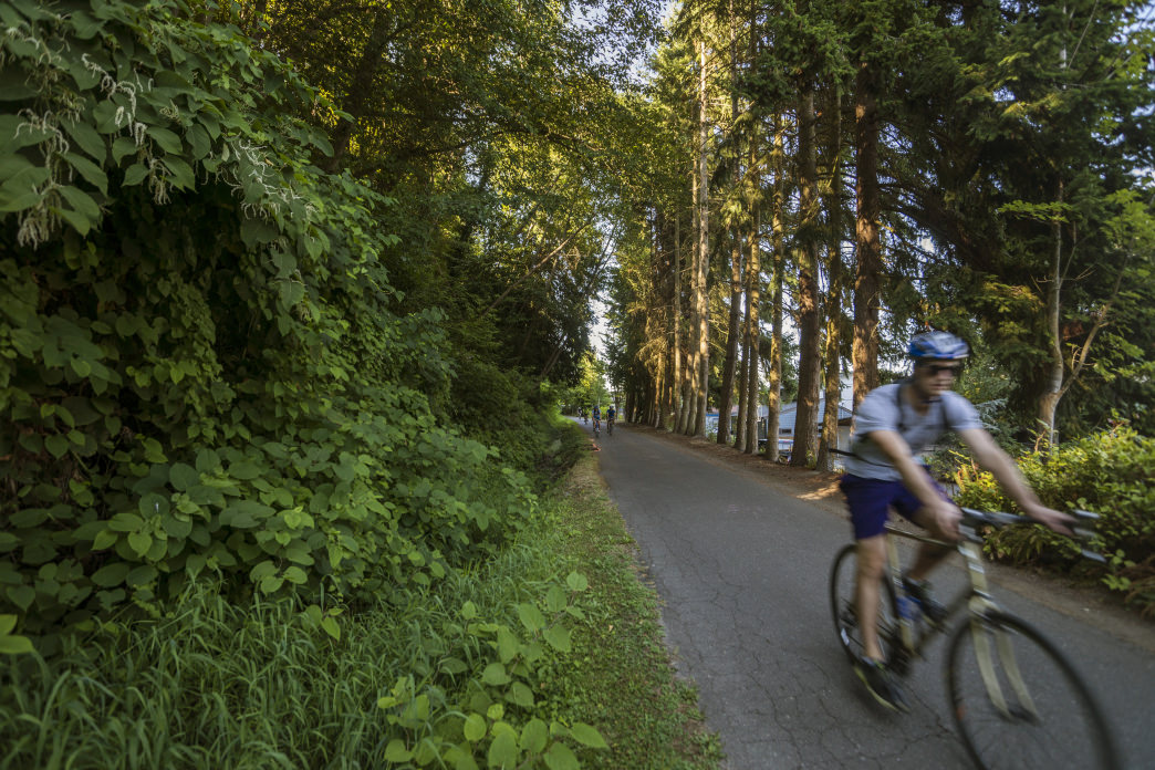 The Burke-Gilman Trail is part of 90 miles of biking trails in Seattle.