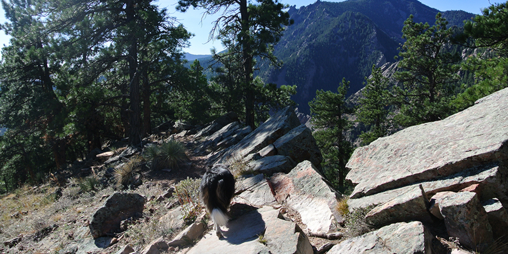 Colorado, devil's thumb—on sunday, august 7, 1955, john auld (16),. Boulder S 4 Overlooked Hikes