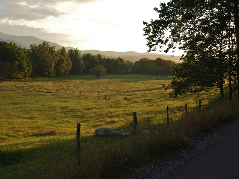 Cades Cove Loop Road in Great Smoky Mountains National Park.