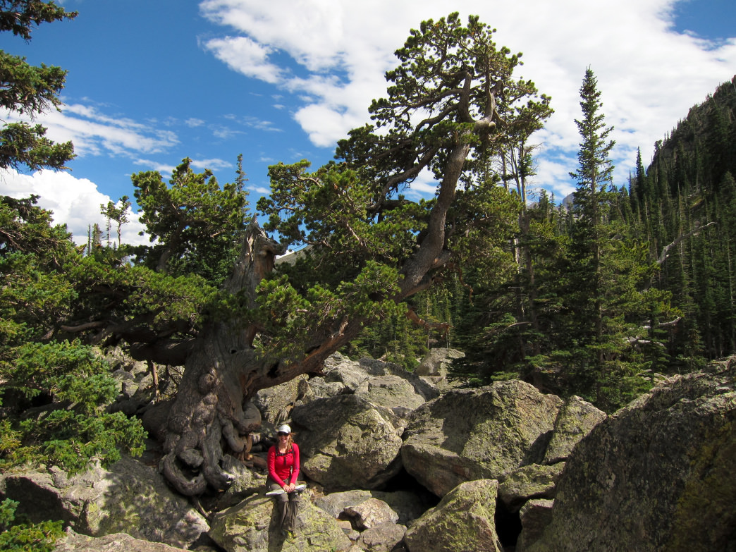 Rocky Mountain National Park is about 90 minutes away from Golden, and has tons of hiking and bouldering opportunities.