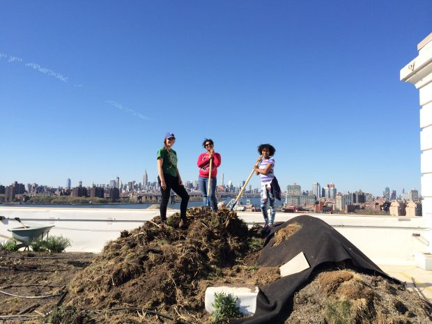 Three women holding pitchforks stand on top of a large compost heap with skyscrapers in the background.