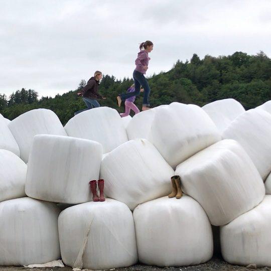 The three Mahaffy children jump around on hay bales.