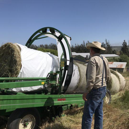 Garry Mahrt watches the machine wrap hay bales for storage.