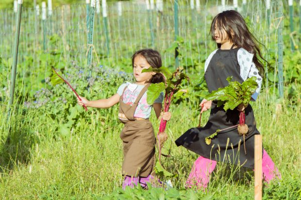Two girls run through the Zenger Farm lands while carrying freshly picked beets.