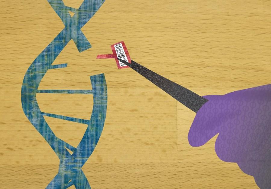 أداة سحرية لتعديل الجينات للعلم