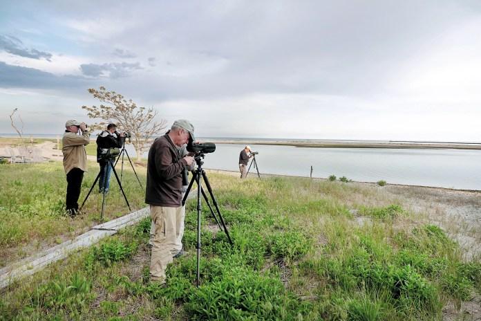 Five people bird watching.