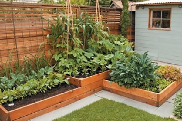 wood touches backyard gardens