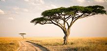 20190514173813 promovacances.com Afrique