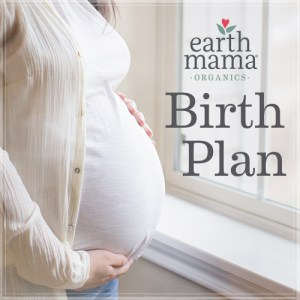 Earth Mama Angel Baby Free Birth Plan
