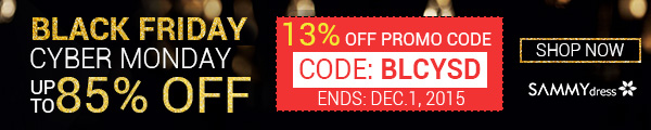 Black Friday and Cyber Monday Flash Sale
